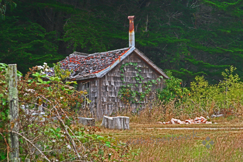 The Old House on the Coast ~ Nestled in tall Cypresses and tangles of blackberries and  old garden plants, the Rotchev House is on the Fort Ross Historic State Park grounds.  It was renovated in 1836 for Alexander Rotchev, manager of the Fort Ross Company at that time.