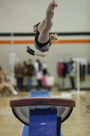 Gymnastics 2018-19