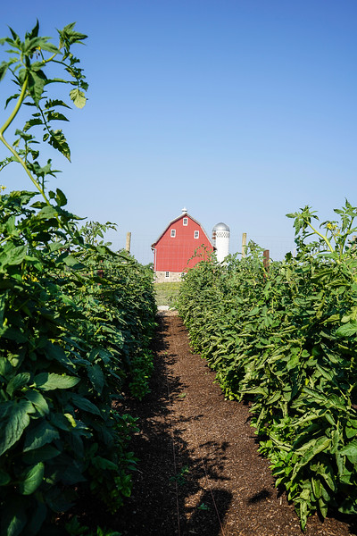 Arboretum Farm 8-19-24.JPG
