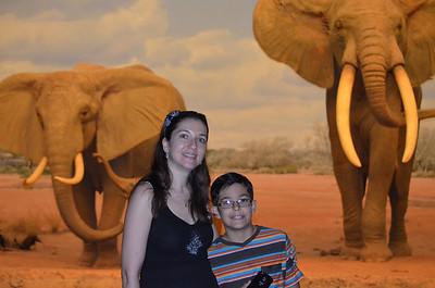 2013_07_20 Natural History Museum