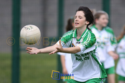 Baltinglass Ladies 09-10