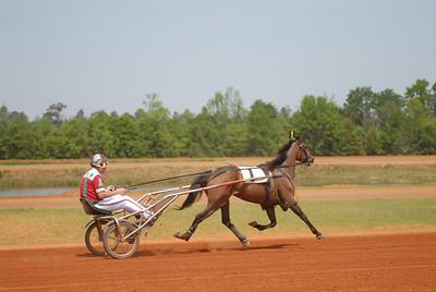 Races 2010