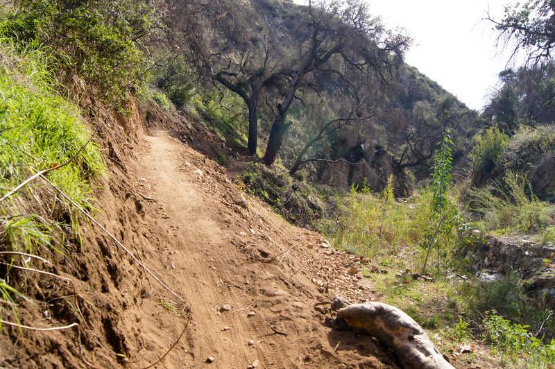 201201291601-El Prieto Trailwork.jpg