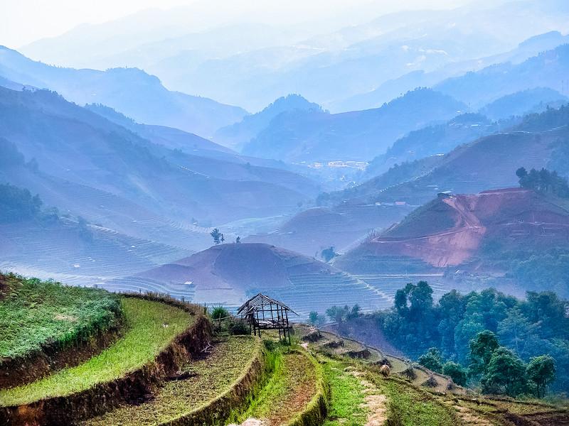 Vietnam Mu Cang Chai_P1100776.jpg