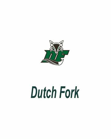 Dutch Fork High