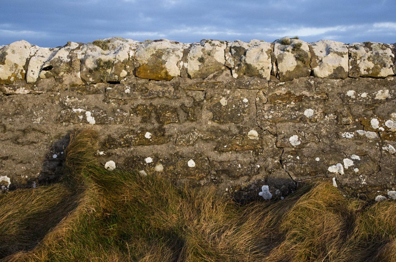 NC500 - Caithness - Stone wall