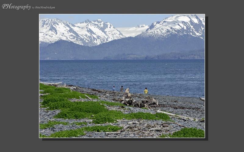 My Alaska 12-08-074.jpg