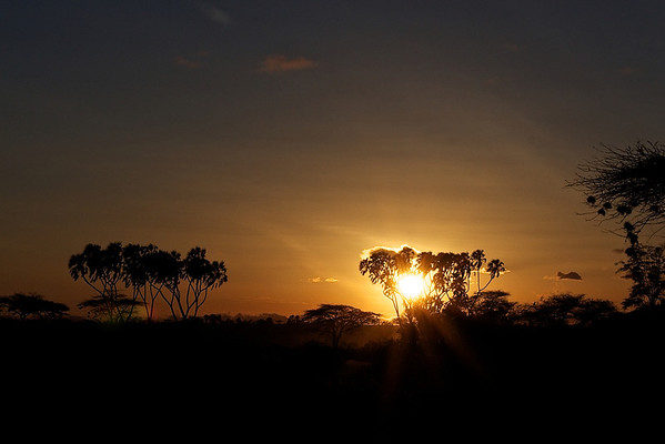 African Sunrises and Sunsets