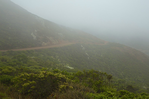 Hike to Tennessee Beach - Foggy Morning, August 19, 2014
