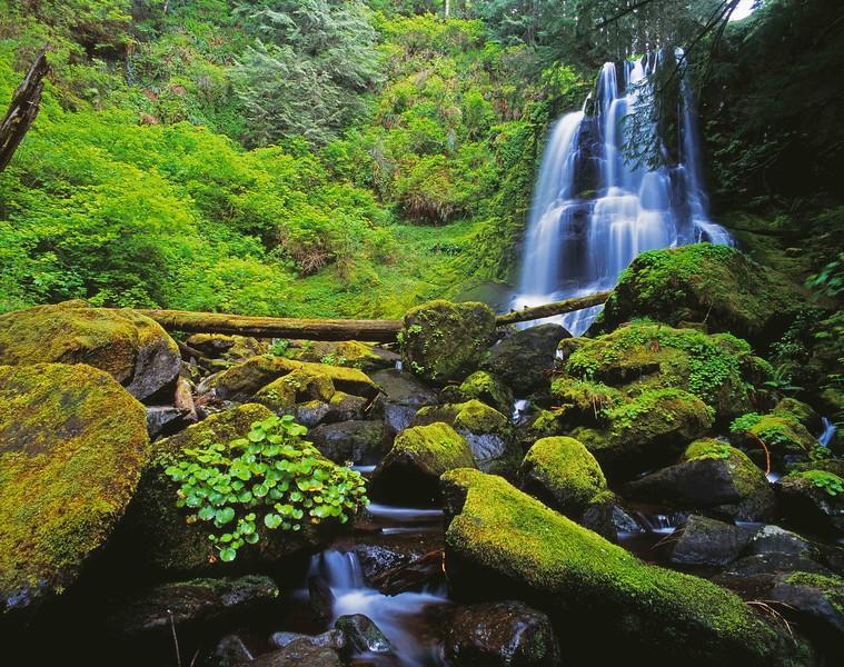 Upper Kentucky Creek Falls