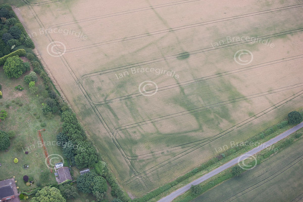 Crop Marks and Earthworks