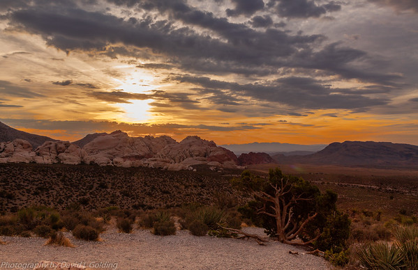 Red Rock Canyon National Conservation Area (NV) Collection