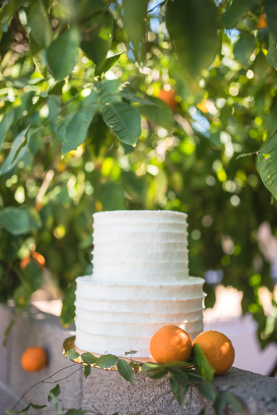 Citrus Styled Shoot (32 of 120).jpg