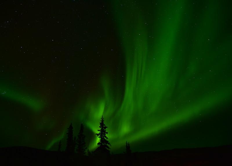 NEA_4983-7x5-Northern Lights.jpg