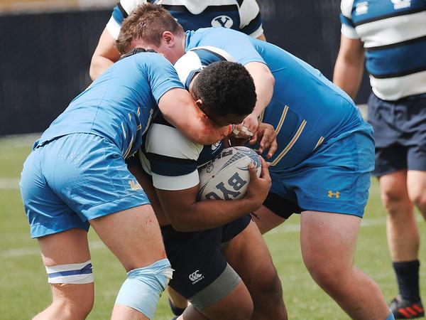 2019 / D1A Rugby Playoffs: BYU X UCLA Rugby