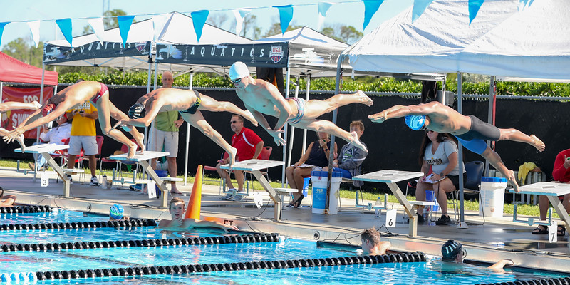 10.30.18 CSN Swim-Dive Districts-258.jpg