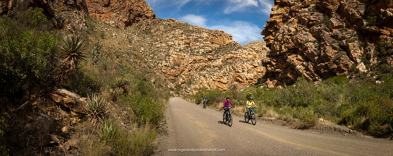 The Seweweekspoort valley quickly narrows until there's just enough room for the road and the Klein Rivier.