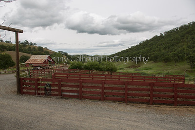 4-7-2013    4L Ranch