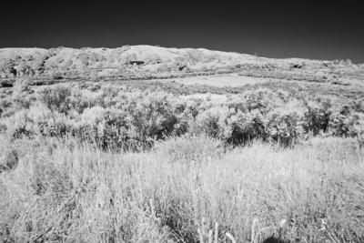 Skyline Ridge - July 11th 2010