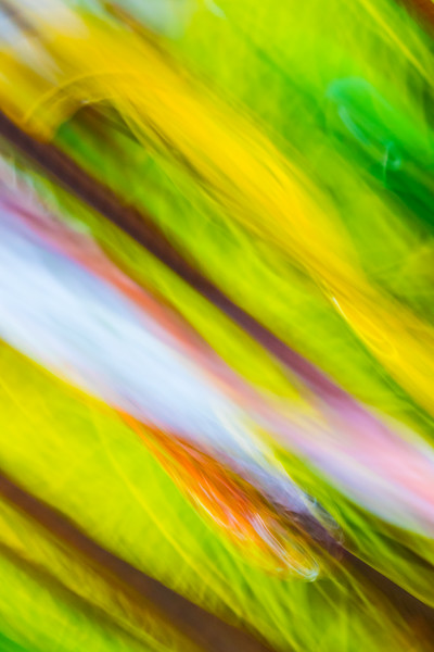 Sideways blurred abstract image with bright greens and yellows