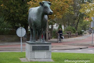 Nederland Friesland