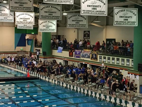 2015 Swim/Dive D3 State Championship