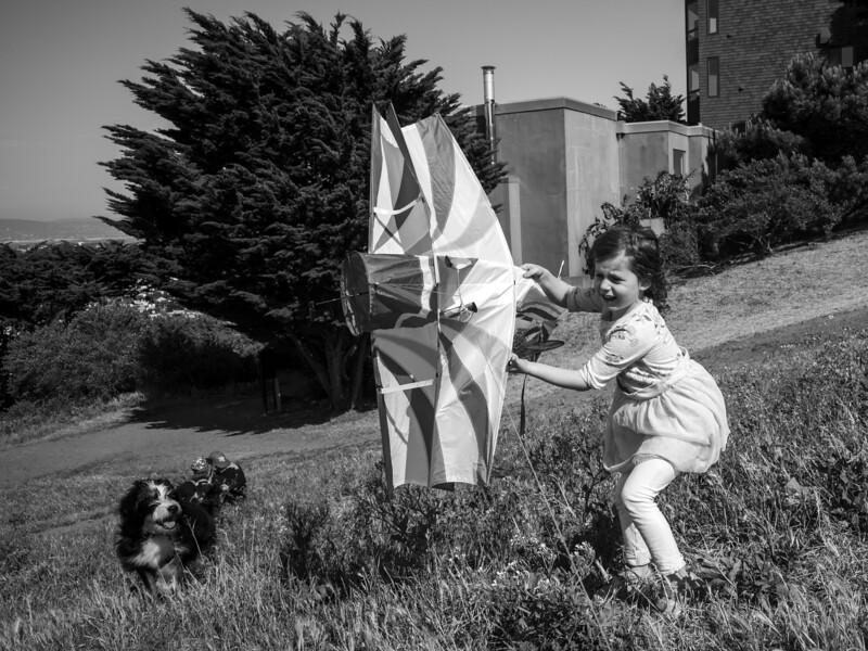 kite quarantine 1163315-10-20.jpg