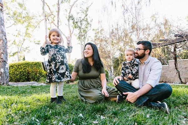 The Bush Family - December 2017