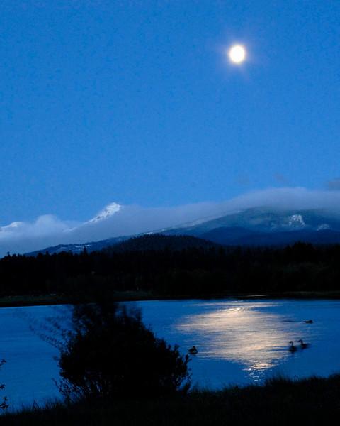 moonbeamsv_DSC72442.jpg