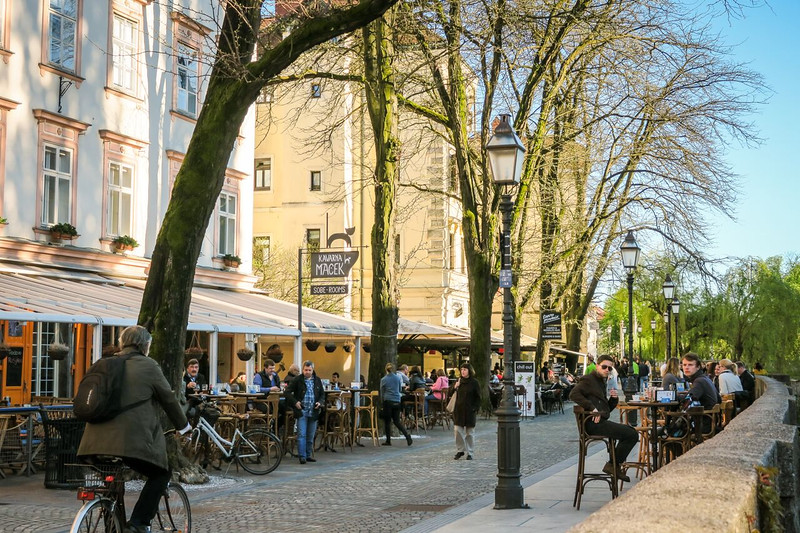 Tree-lined street with outdoor cafes