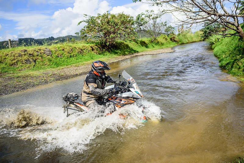 2018 KTM New Zealand Adventure Rallye - Northland (225).jpg