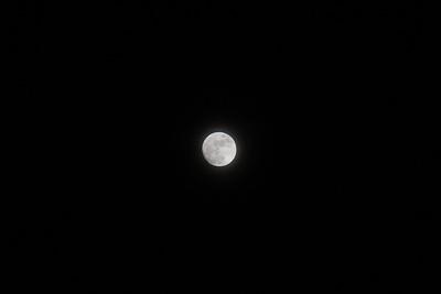Moon shots?
