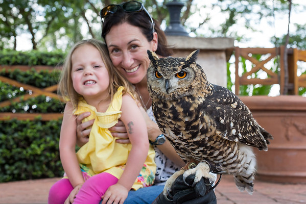 Montecasino Bird Park - December 2015