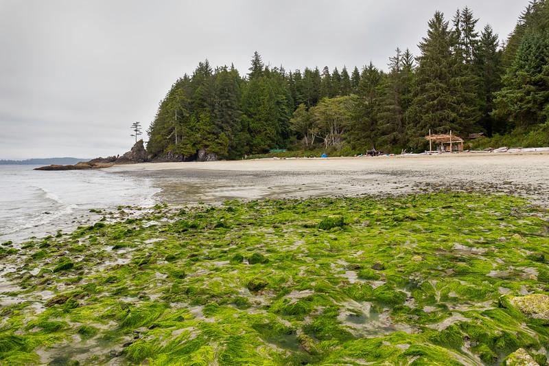 BeachStage.jpg
