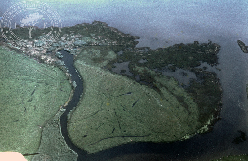 Saxån outfall | EE.1648