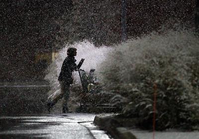20151120 - Snow Feech (MA)