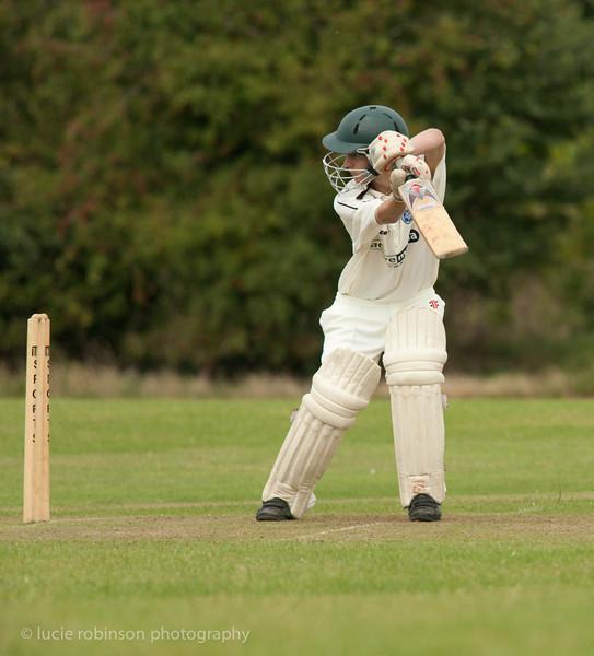 110820 - cricket - 250-2.jpg