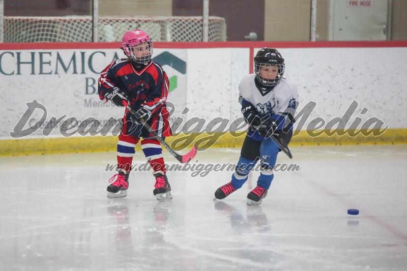 Blizzard Hockey 111719 6971.jpg
