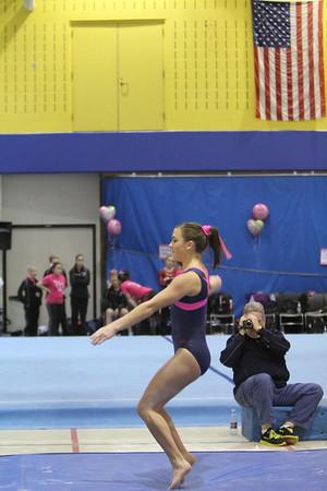 2012-2013 LFHS Gymnastics