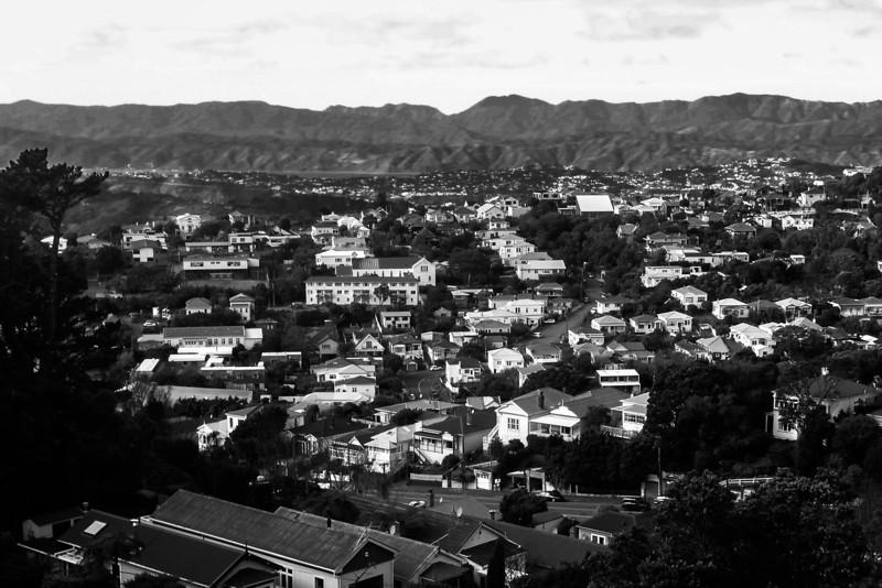 Nieuw_Zeeland_24_Dimitri_Belfiore.jpg