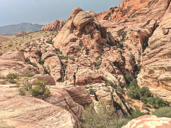 Things to do in Las Vegas - Red Rocks Canyon Conservation Area