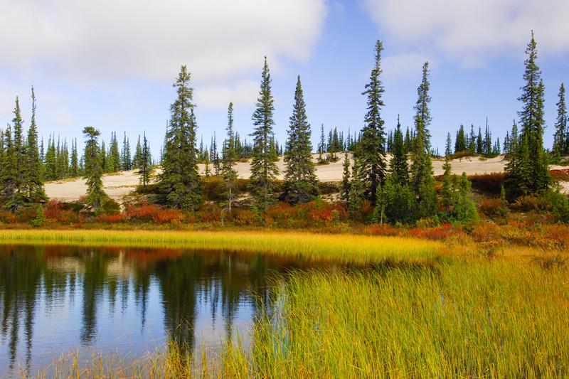Whitefish Lake-4.jpg