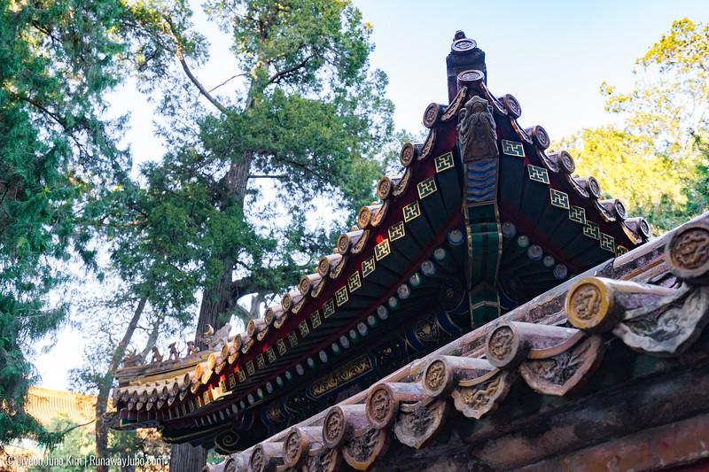 Forbidden City-2746.jpg