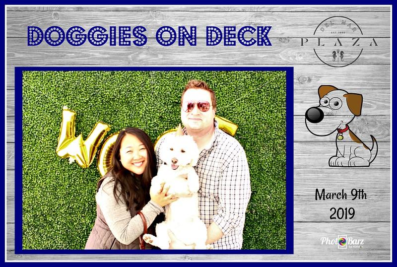 Doggys on Deck16.jpg
