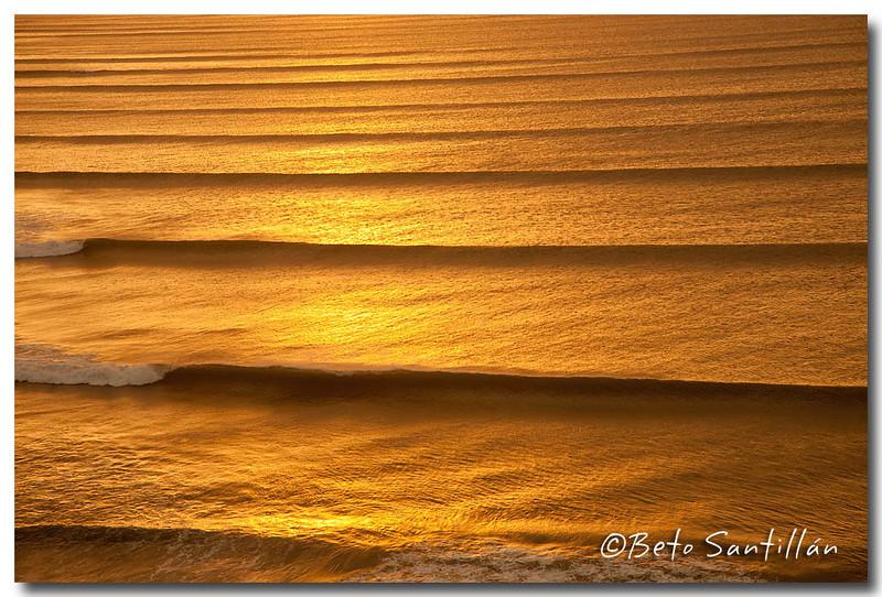 CHICAMA 5D 2008 03  3-0294++.jpg