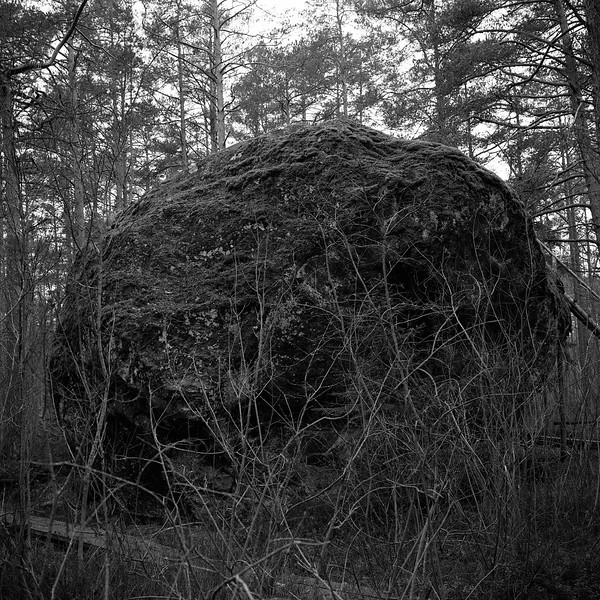 Estonie643.jpg