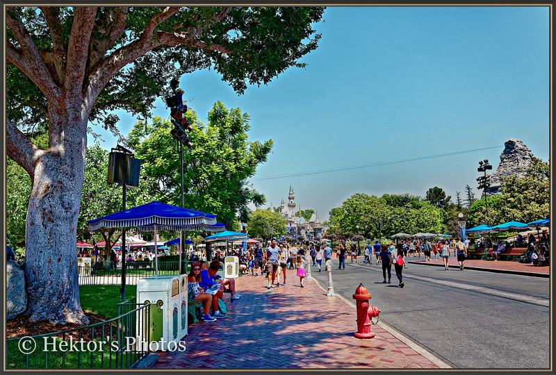 Disneyland Leica Q-8.jpg