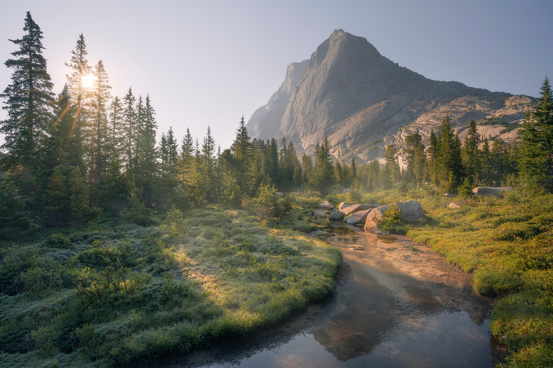MountainMorning20x30.jpg