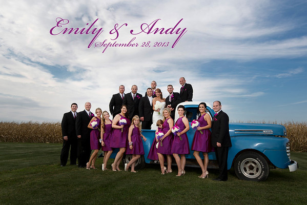 Emily Salas & Andy Brzezinski Wedding Gallery
