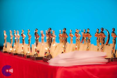 2011 Drama Awards